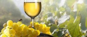 koolhydraatarm dieet en wijn